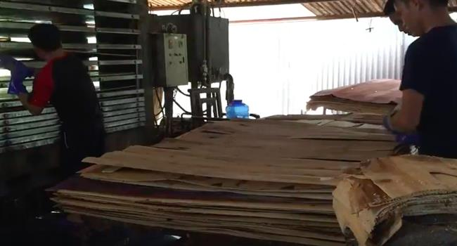 Plywood-manufacturing-process