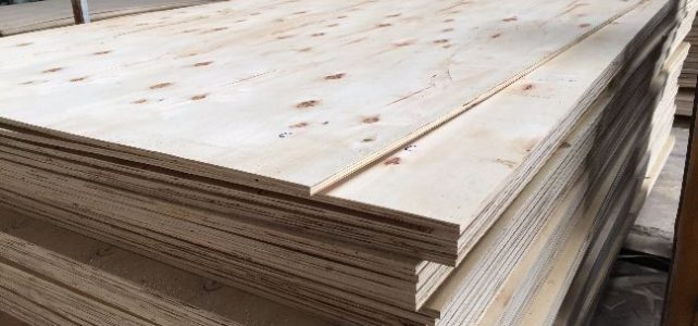Plywood Thickness in Vietnam