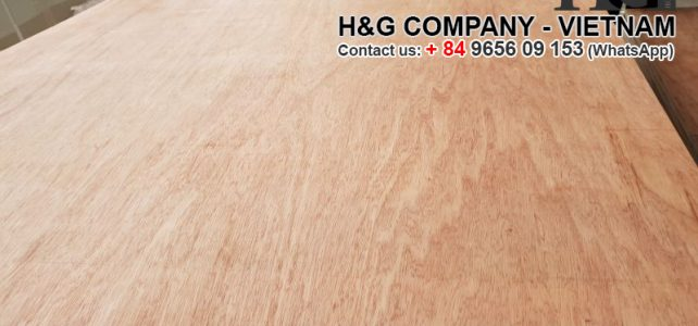 Main products of H&G's Vietnam packing plywood