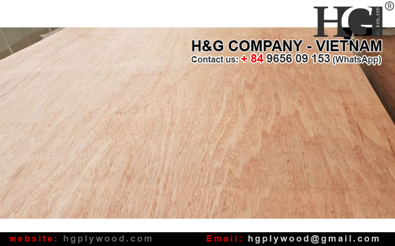 Packing Plywood, AB grade, cheap price
